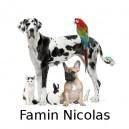 Famin Nicolas